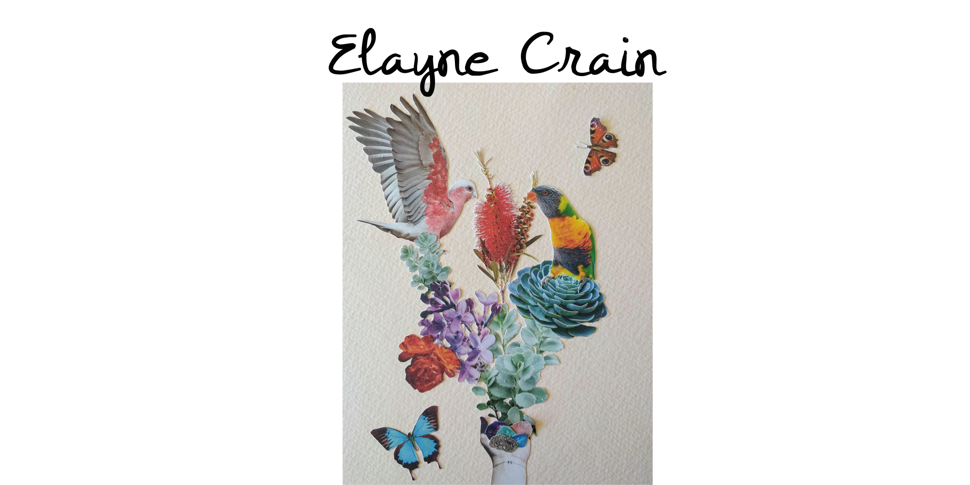 Elayne Crain